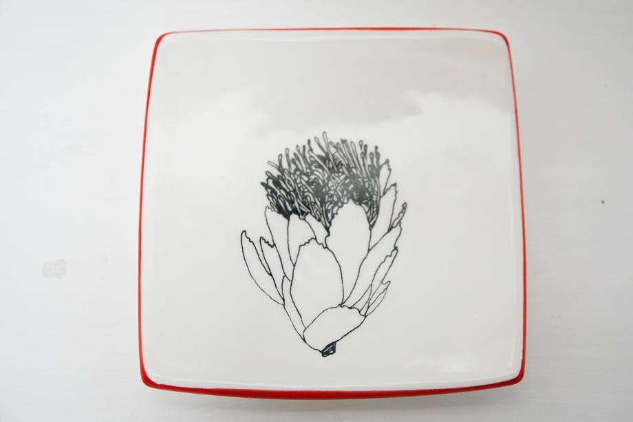 plates-sm-protea