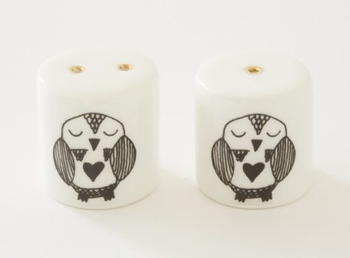 Salt and Pepper Shakers - Day Owl